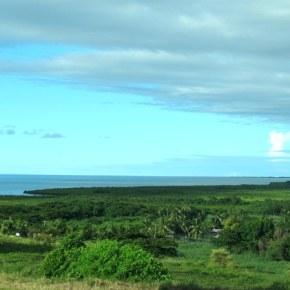 Fizzy in Fiji!